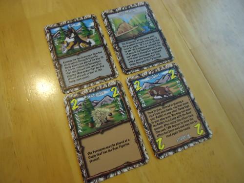 Scavenger cards