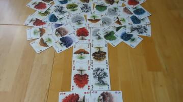 Arboretum - Cards
