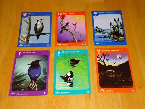 Birds of a Feather Cards 1