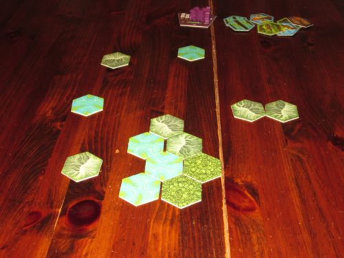 The end of the game. These are the tiles that will remain unexplored.